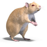 Cute hamster. 3D rendering of a sweet hamster with clipping path and shadow over white royalty free illustration