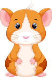 Cute hamster cartoon Stock Photo