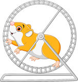 Cute hamster running in roling wheel Stock Photography