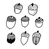 Cute hand drawn acorn vector set Royalty Free Stock Images