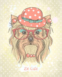 Cute hand drawn card with fashion yorkshire terrier girl. Stock Photos