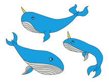 Cute hand drawn cartoon characters of narwhal whales. For your decoration Stock Photo