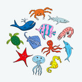 Cute hand drawn cartoon ocean animals. On a light background. Vector illustration of sea creatures Royalty Free Stock Photo