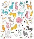 21 cute hand drawn cat colorful set with twigs Royalty Free Stock Image
