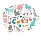 Cute hand drawn cats colorful set Royalty Free Stock Photos