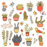 Cute hand drawn collection of house plants Stock Photos
