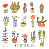Cute hand drawn collection of house plants Royalty Free Stock Photo