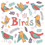 Cute hand drawn colorful birds collection Royalty Free Stock Photography