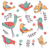 Cute hand drawn colorful birds collection Stock Images
