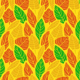 Cute hand drawn fall Leaves ornament. Colorful Vector seamless pattern. Stock Image