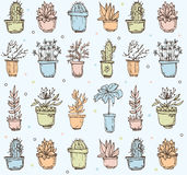 Cute hand drawn seamless pattern with cactus Royalty Free Stock Photography