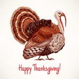 Cute hand drawn turkey - 2 Royalty Free Stock Photo