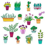 Cute hand drawn vector flowers in the pots Stock Images