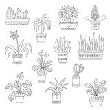 Cute hand drawn vector flowers in the pots. Royalty Free Stock Images
