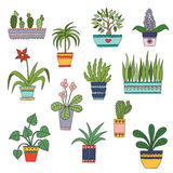 Cute hand drawn vector flowers in the pots. Royalty Free Stock Photos