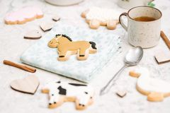 Farm cookies Royalty Free Stock Photography