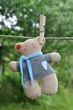 Cute handmade teddy bear in the clothesline. Cute handmade teddy bear in a gray pullover with a heart and a blue scarf in the clothesline on a green background Stock Image