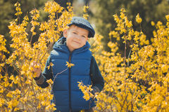 Cute handsome boy in stylish blue dress and hat close to yellow flowers enjoying spring time Stock Images