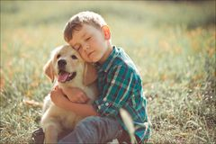 Cute handsome boy teen with blue eyes playing outdoor with amazing white pink labrador retriever puppy enjoying summer sunny day v royalty free stock image