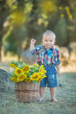 Cute handsome boy wearing jeans close to basket with sunflowers and stones. Royalty Free Stock Photography