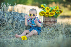 Cute handsome boy wearing jeans close to basket with sunflowers and stones. Stock Photography
