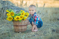 Cute handsome boy wearing jeans close to basket with sunflowers and stones. Stock Images