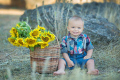 Cute handsome boy wearing jeans close to basket with sunflowers and stones. Royalty Free Stock Photo