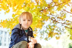 Cute handsome smiling little boy portrait. Stylish boy enjoying colourful autumn park. Autumn season. Healthy and happy childhood. stock photos