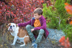 Cute handsome stylish boy enjoying colourful autumn park with his best friend red and white english bull dog.Delightfull. Scene of pretty boy together with Royalty Free Stock Photo