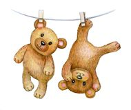 Cute hanging baby bears. Cute hanging  baby bear  isolated, hand drawing Stock Photos