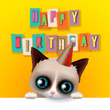 Cute happy birthday card with fun grumpy cat Royalty Free Stock Image