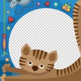 Cute happy birthday cat photo frame birthday design baby celebration vector illustration. Cute happy birthday cat photo frame vector illustration. Birthday Royalty Free Stock Image