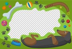 Cute happy birthday dog photo frame birthday design baby celebration vector illustration. Cute happy birthday dog photo frame vector illustration. Birthday Stock Photos