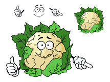 Cute happy cartoon cauliflower Royalty Free Stock Images