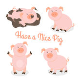 Cute happy cartoon pigs vector set Royalty Free Stock Photos