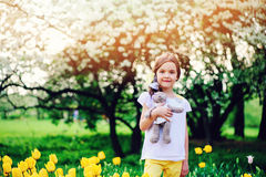 Cute happy child girl holding teddy bear on spring walk with yellow tulips on background Royalty Free Stock Photos