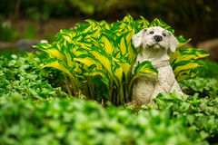 Cute Happy Dog Lawn Ornament in Lush Green Garden Royalty Free Stock Images