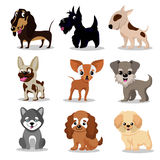 Cute happy dogs. Cartoon funny puppies vector characters collection stock illustration