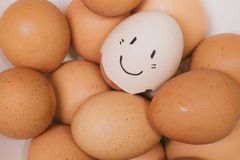 Cute happy eggs smile face stock photo