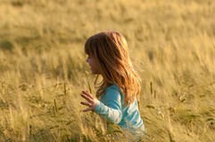 Cute happy girl walking in the field of wheat Stock Photography