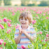 Cute happy little blond child in blooming poppy field. With pink flowers. Smiling boy. Active leisure with kids in summer, on sunny warm day, outdoors stock image