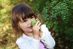 cute happy little girl holding green leaves Stock Photos