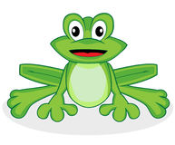 Cute happy looking tiny green frog with big eyes Stock Images