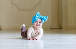 Cute happy 6 months baby girl with bright bow crawling indoor. Pretty smiling baby girl with open mounth. Light royalty free stock photo