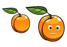 Cute happy orange apricot fruit Stock Photography