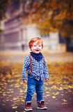Cute redhead toddler baby boy walking among fallen leaves on autumn street stock photo