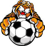 Cute Happy Tiger Mascot with Soccer Ball Stock Photos