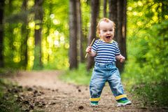 Cute happy toddler child boy in forest stock photos
