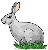 Cute hare in the grass. Artistic illustration. Cute hare in the grass stock illustration