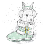 Cute hare in winter boots and headphones. New Year`s and Chris Stock Images